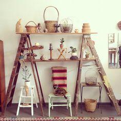 Adorable interior house plant shelf set up