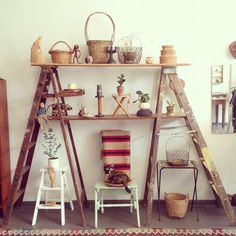 Adorable interior house plant shelf set up