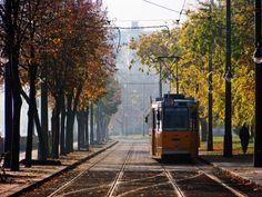 "Autumn tram"" Tamás Kaszai"