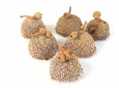 Unfinished Fringed Fancy Small Bur Oak Acorn Caps by bytheinch