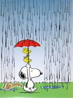 Snoopy, Woodstock and Friend Sharing an Umbrella in the Rain