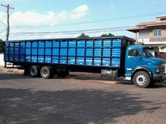 boiadeiros de campo grande ms | Gaiola de ferro vilaços em Campo Grande