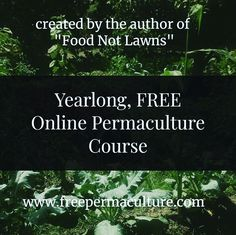 Come join 50000 students learning together how to #growfoodnotlawns and so much more. Link in bio. Permaculture Courses, Lawns, Student Learning, Students, Join, Author, Instagram, Writers