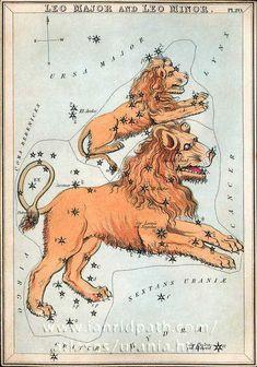 Card 20 Leo Major and Leo Minor - Urania's Mirror