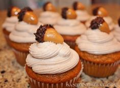 Pumpkin cupcakes with cinnamon creamcheese frosting