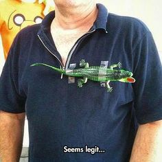 Just Another Lacoste T-Shirt