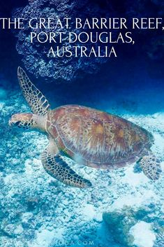 Great Barrier Reef is the most pristine and supports a wide array of biodiversity. A World Heritage Site and one of the seven natural wonders of the world.