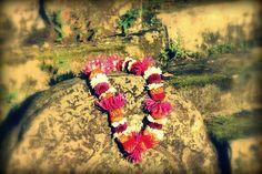 Leimaking - handgearbeitete  Blumenketten aus frischen Blüten sind ein ganz besonderes Gastgeschenk.