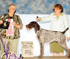 You've seen the dog shows, but how much do you know about the handlers?