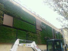 #Vertical gardens as environmental #requalification: an example in #Florence, #Italy http://oltreilguardo.altervista.org/giardini-verticali-un-esempio-presso-lex-carcere-delle-murate-di-firenze/#