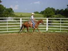 How to Construct a Round Pen for a Horse #stepbystep