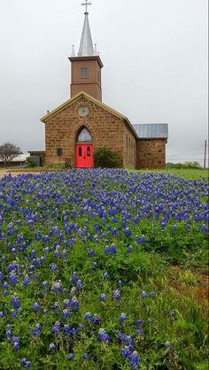 Church and Blue bonnets.