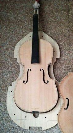 Decolative viola