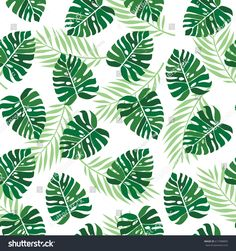 Tropical palm leaves seamless vector floral pattern. jungle leaves background