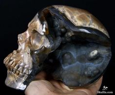 These Extraordinary Geode Skulls Will Leave You Breathless Dino Eggs, Dinosaur Eggs, Z Arts, Crystal Skull, Fossil, Agate, Carving, Skeletons, Gemstones