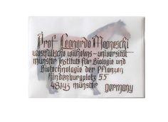 #blackletter #calligraphy #horse #envelope