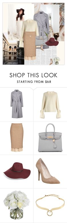 """""""Sophisticated"""" by rainie-minnie ❤ liked on Polyvore featuring Boohoo, TIBI, MaxMara, Hermès, Halogen, Office, Diane James and Alexis Bittar"""