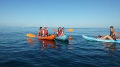 Realizamos actividades Multi Aventura para grupos de despedidas de soltero y soltera en Málaga y Granada. Rafting, descenso, escalada, paseo en globo, rutas Granada, Rafting, Outdoor Decor, Nature Activities, Bachelor Parties, Single Men, Bouldering, Trekking, Walks