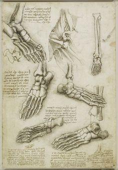 In this image, you will find Leonardo Da Vinci foot bone drawing in it. Foot Anatomy, Human Anatomy Art, Human Anatomy For Artists, Anatomy Sketches, Anatomy Drawing, Bone Drawing, Art Club Projects, Skeleton Anatomy, Art Alevel