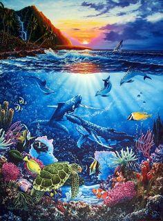 beautiful blue daniel bergren dolphin dolphins image 190109 on