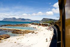 Things to do Cape Town: Explore the Mother City without spending a fortune. Here are 50 things to do in Cape Town for or less. Cape Town Tourism, V&a Waterfront, Train Travel, Train Trip, City Pass, Nature Adventure, By Train, Ways Of Seeing, Future Travel