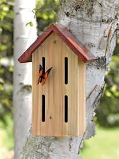 Beneficial Butterfly Shelter | Buy from Gardener's Supply