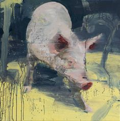 Tor-Arne Moen (Norway 1966), Pig on Yellow Surface, egg, oil on canvas, 85x85cm - Found on torarnemoen.com