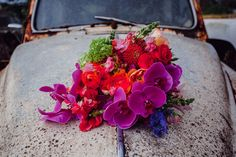 "We'll never tire of a Frida Kahlo inspired shoot and these striking scenes by Perth stylist Peak Lane are ticking all our Mexican-loving boxes. Taking cues from the giant prickly pears and abandoned caryard, we're loving the time-warped pretty meets gritty vibe. ""The vibrancy of Mexican culture is so inspiring for people who want to …"