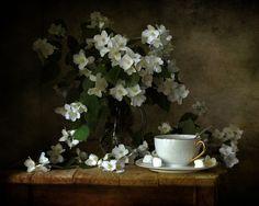 "Photo from album ""ЖАСМИН"" on Yandex. Hyper Realistic Paintings, Still Life Drawing, Watercolor Pictures, Still Life Photos, Classic Paintings, Still Life Photography, Light In The Dark, Wallpaper, Cuppa Tea"