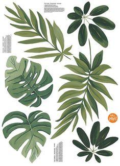 Brewster Home Fashions Havana Leaves Wall Art Kit Leaf Wall Art, Leaf Art, Leaf Drawing, Plant Drawing, Big Leaf Plants, Plant Leaves, Big Leaves, Painted Leaves, Tropical Leaves