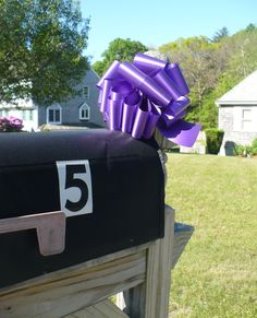 Purple ribbons remind Cape Codders about the Relay for life, an event that raises money for cancer research and prevention.