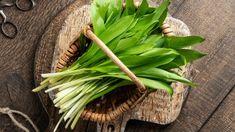 Medvědí česnek: kdy roste, kde roste a jak ho zpracovat? Pesto, Asparagus, Carrots, Benefit, Vegetables, Health, Plants, Food, Studs