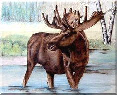 Moose Wading, by Lynda Eaves, Pyrography with color on wood panel