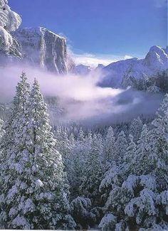 Google+優勝美地國家公園的冬天。漂亮!