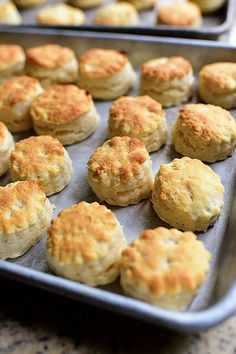 Self-Rising Biscuits  Note: uses self-rising flour and salt. Also shows how to add vinegar to milk for diy buttermilk! Awesome for a cooking noob.