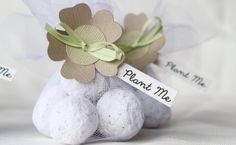 Personalized-Flower-Seed-Wedding-Favors-e1449826202471.jpg (625×385)