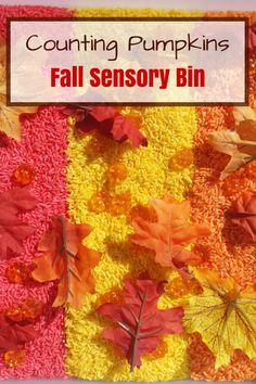 Practice counting and explore the colors of fall with this fun fall sensory bin complete with brightly dyed rice and pumpkins. Autumn Activities For Kids, Preschool Learning Activities, Sensory Activities, Hands On Activities, Toddler Preschool, Crafts For Kids, Preschool Ideas, Sensory Play, Fall Sensory Bin