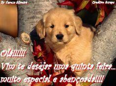 www.uma linda quinta feira.com | Frases de Boa Quinta Feira para Facebook