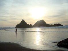 San Francisco Ocean Beach By Crystal Ardelean