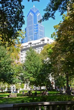 Skyline from the park...Rittenhouse Square.