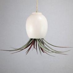 Items similar to Ceramic Air Plant Vase - Hanging AirPlant Pod (tm) - Silky Matte White by mudpuppy on Etsy