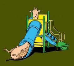 Giraffes don't like playgrounds.