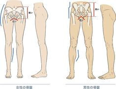Female and Male Legs Example