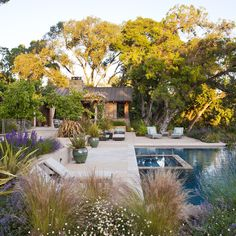 Modern Texas Landscaping Design Ideas, Pictures, Remodel, and Decor