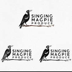 Freelance Projects Singing Magpie Produce needs a powerful logo and business card by olimpio