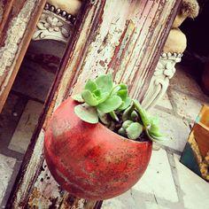 Maceta hecha a partir de un farol de auto de los años '50, de la tienda @thepulgasociety  #deco #design #recycle #MiTiendaNube