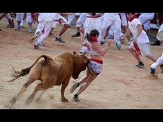 Funny video | Funny Animal | Funny crazy bull fails | Most Awesome Bullf...