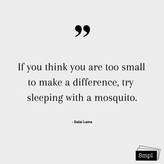 @smplsweden posted to Instagram: If you think you are too small to make a difference, try sleeping with a mosquito. - Dalai Lama    #dalailama #makeadifference #change #socialgood #förändring #smpl #keepitsmpl #hållbarvardag #miljö
