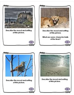 Differentiated Close Reading skills practice with picture task cards for Character, Setting and Mood from Book Buddies helps ALL your students master these reading comprehension skills, making it easier to read and comprehend text passages. Graphic organizers, worksheets and vocabulary included. Great activities for class discussion, small group, partners, and individual work. $