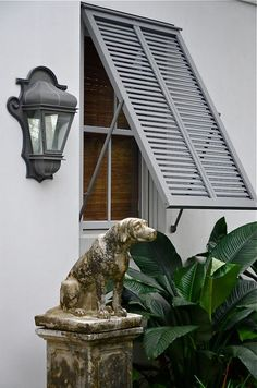 Bermuda shutter